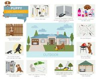 Cuidado y seguridad del perrito en su hogar outdoor Entrenamiento del perro casero adentro libre illustration