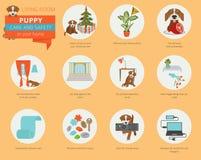 Cuidado y seguridad del perrito en su hogar Sala de estar Trainin del perro casero ilustración del vector