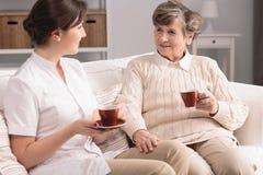 Cuidador amigável e chá bebendo de sorriso da mulher idosa durante a reunião imagens de stock