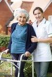 Cuidador que ayuda a la mujer mayor a caminar en jardín usando marco que camina Imagen de archivo libre de regalías