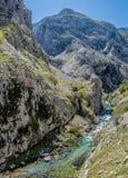 Cuidados del río en las montañas de Picos de Europa Imagen de archivo