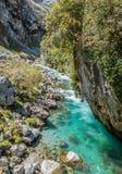 Cuidados del río en las montañas de Picos de Europa Fotos de archivo libres de regalías