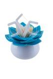 Cuidados dentários em um apoio no branco imagens de stock