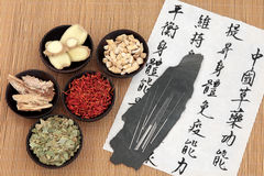 Cuidados médicos chineses Imagens de Stock