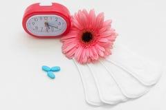 Cuidados médicos fêmeas Ciclo da menstruação Imagens de Stock