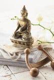 Cuidar el tratamiento en exceso con zen en mente Fotos de archivo libres de regalías