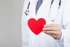 Cuide al cardiólogo que lleva a cabo un corazón en sus manos Cardiología y concepto de la enfermedad cardíaca imagen de archivo libre de regalías