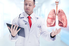 Cuide sostener los órganos humanos y la tableta en un hospital De alta resolución Imagenes de archivo
