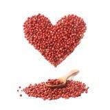 Cuillère au-dessus des graines de poivron rouge d'isolement Photo libre de droits