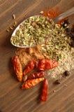 Cuillère avec des épices Image stock