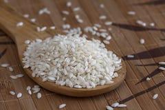 Cuillère de riz blanc photo stock