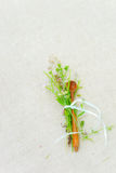 Cuillère en bois avec des fleurs Image stock