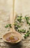 Cuillère et miel photo stock