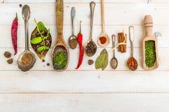 Cuillères avec des herbes et des épices Photos stock