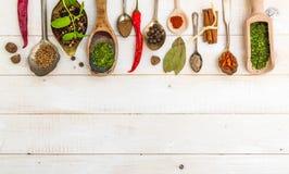 Cuillères avec des herbes et des épices Image libre de droits