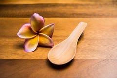Cuillères en bois Image stock
