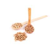 Cuillères en bois avec des pistaches Photo libre de droits