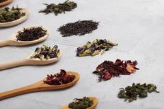 Cuillères en bois avec différentes feuilles de thé sur le backgro concret gris Photos libres de droits
