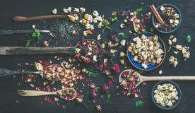 Cuillères en bois avec les herbes sèches, bourgeon floraux au-dessus de fond foncé Image stock