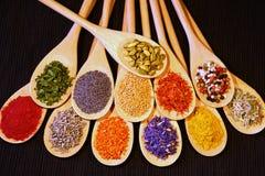 Cuillères en bois et épices colorées multi Image libre de droits