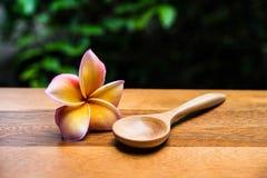 Cuillères et fleur en bois Photographie stock