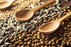 Cuillères et grains en bois Photographie stock libre de droits