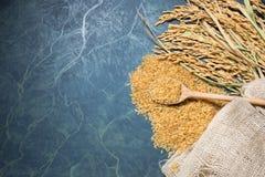 Cuillerée de riz et de transitoire photo libre de droits
