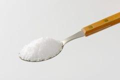 Cuillerée de sel brut photos libres de droits