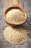 Cuillère des graines d'amaranthe Photo stock