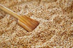 Cuillère en bois avec des graines de sésame Photos libres de droits
