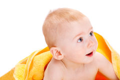 Cuious baby Stock Images