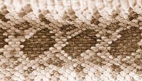 Cuir 2 de peau de serpent à sonnettes Photographie stock