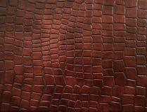 Cuir avec la texture rectifiée par crocodile. Photographie stock libre de droits