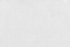 Cuir blanc Photographie stock libre de droits