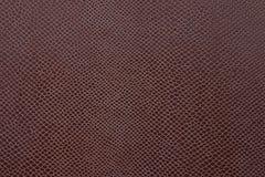 Cuir brun abstrait de couleur Photographie stock libre de droits