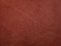 Cuir brun-orange de texture Images stock
