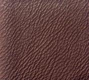 Cuir de Brown Image stock