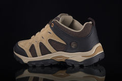 cuir de chaussures Image libre de droits