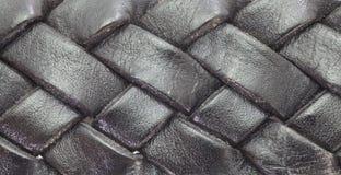 cuir de courroie Photos libres de droits