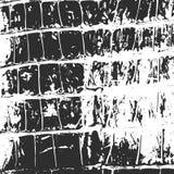 Cuir de crocodile, noir abstrait de texture sur le blanc Photos libres de droits