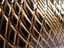 Cuir de luxe de serpent de Brown Images stock