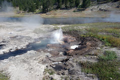 Cuisant à la vapeur, caldeira colorée au parc de yellowstone Photo stock