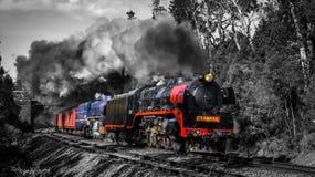 Cuisez le train à la vapeur voyageant par Macedon, Victoria, Australie, septembre 2018 images stock