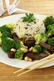 Cuisine chinoise Photographie stock libre de droits