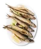 Cuisine espagnole Fruits de mer cuits à la friteuse Pescaito Frito Image libre de droits
