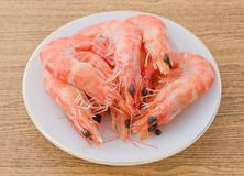 Cooked Prawns or Tiger Shrimps in White Plate Stock Image