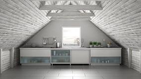 Cuisine industrielle de la Scandinavie, mezzanine de grenier, architectur de toit illustration libre de droits