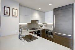 Cuisine moderne de style avec le réfrigérateur lambrissé par bois Images stock