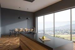 Cuisine panoramique de plancher en bois, grise illustration de vecteur