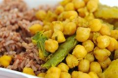 Cuisine végétarienne indienne saine Photographie stock libre de droits